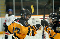JDF Peewee C4 vs Victoria C2 - Feb 28, 2016
